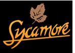 sycamore_b